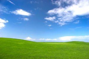 Cláusulas en el contrato de Cloud Computing