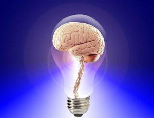 Androginia cerebral. Concepto y beneficios